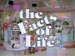 The Facts of Life 1985
