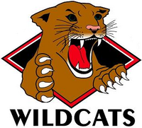 Wichita Falls Wildcats logo (2004-2009)