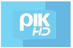 RIK HD logo 80x70