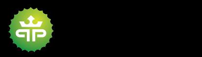 Current Playdom Logo