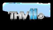 THV Logo B5