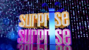 Surprise Surprise 2013