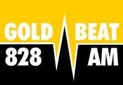 Goldbeat 828 1988