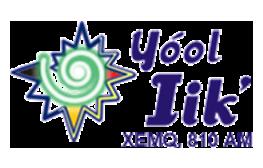 Yoolik
