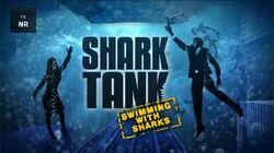 Shark Tank Swimming with Sharks