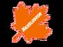 Nickelodeon Maple Leaf