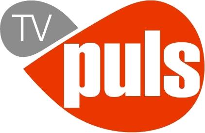 File:TV Puls logo 2010.png