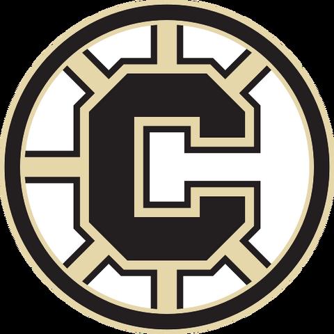 File:Chilliwack Bruins.png
