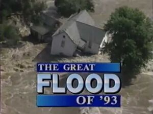 Floodof93