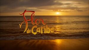 Flor do caribe 2013
