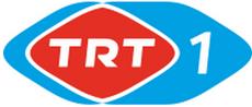 Trt 1 2001 2005 logosu
