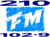 210 1993