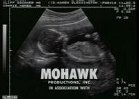 Mohawk Productions B&W Logo