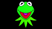 Jim Henson Productions 1989 Kermit Head Widescreen