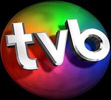 Logo tvb3d preto