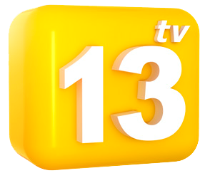 File:13 TV logo 2010.png