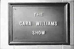 The Cara Williams Show