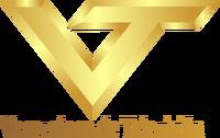 Logo vtv 1996