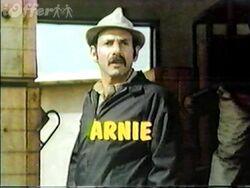 Arnie-dvd-1970-tv-series-hershel-bernardi-44-episodes-d116