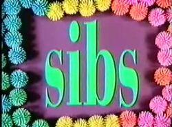 SibsIntroShot