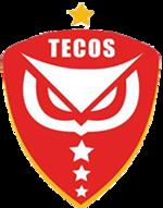 Tecos15logo.png