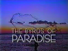 The Byrds of Paradise