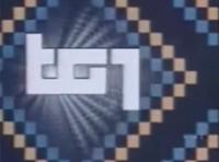 Tg1 1980