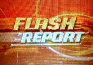 Flashreport2004