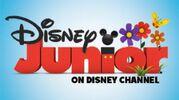 Disney junior spring