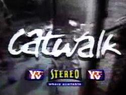 Catwalkseriesintro