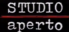 Studio aperto 1991