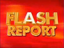 Flash Report 2007 logo