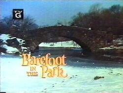Barefootinthepark