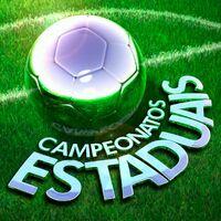 Campeonatos Estaduais (2012)