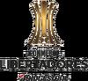 CONMEBOL Libertadores Bridgestone