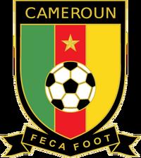 Cameroon 2010crest