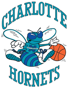 File:Charlotte Hornets.png
