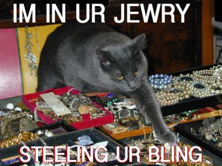 File:Thiefcat.jpg