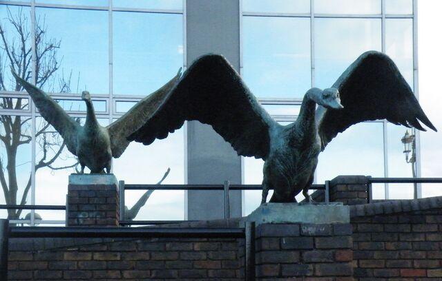 File:Bronze swan 1.JPG