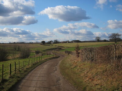 Canons farm feb 2012 0177