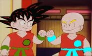 Krillin and goku at tourny