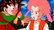 Krillin explaining to goku