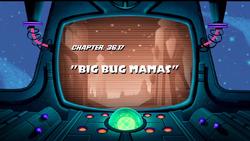 Big Bug Mamas