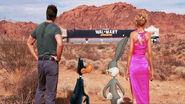 Looney Tunes Back in Action Walmart