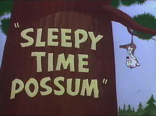 File:Sleepy Time Possum.jpg
