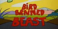 Bird Brained Beast