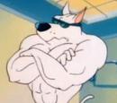 Arnold The Pitbull