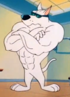 File:Arnold the Pit Bull.png