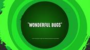 Wonderful Bugs Title Card