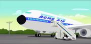 Acme air